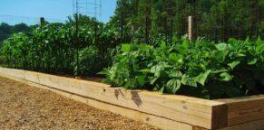 Quality Garden Soil near Charlottesville